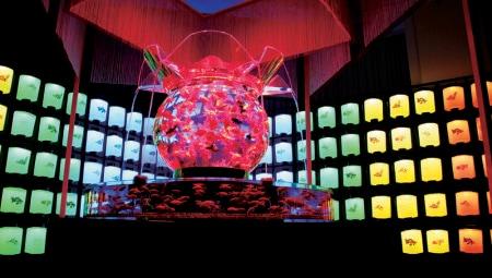 Art Aquarium_Oiran3#7DEAB24
