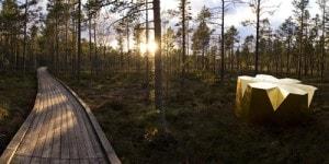 woodland_henrik_lindvall_