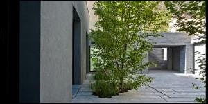 Casa tra gli alberi. Foto Beppe Giardino