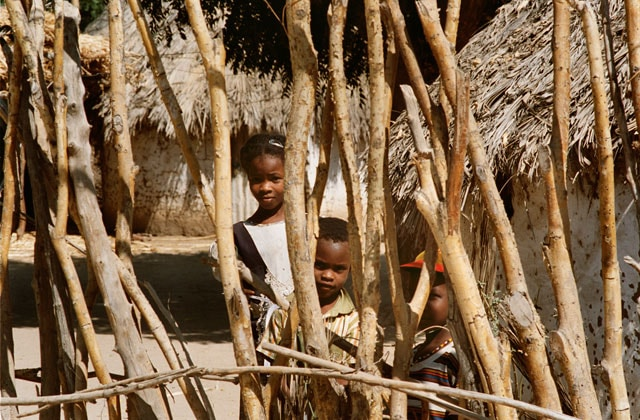 Flos – Rapporto Africa