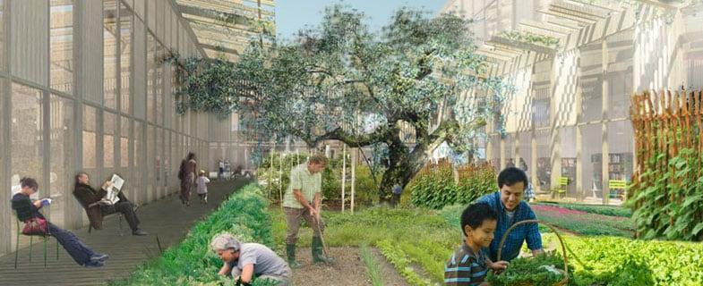 Verso un ecosistema urbano