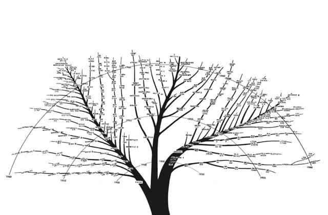 L'albero genealogico del design