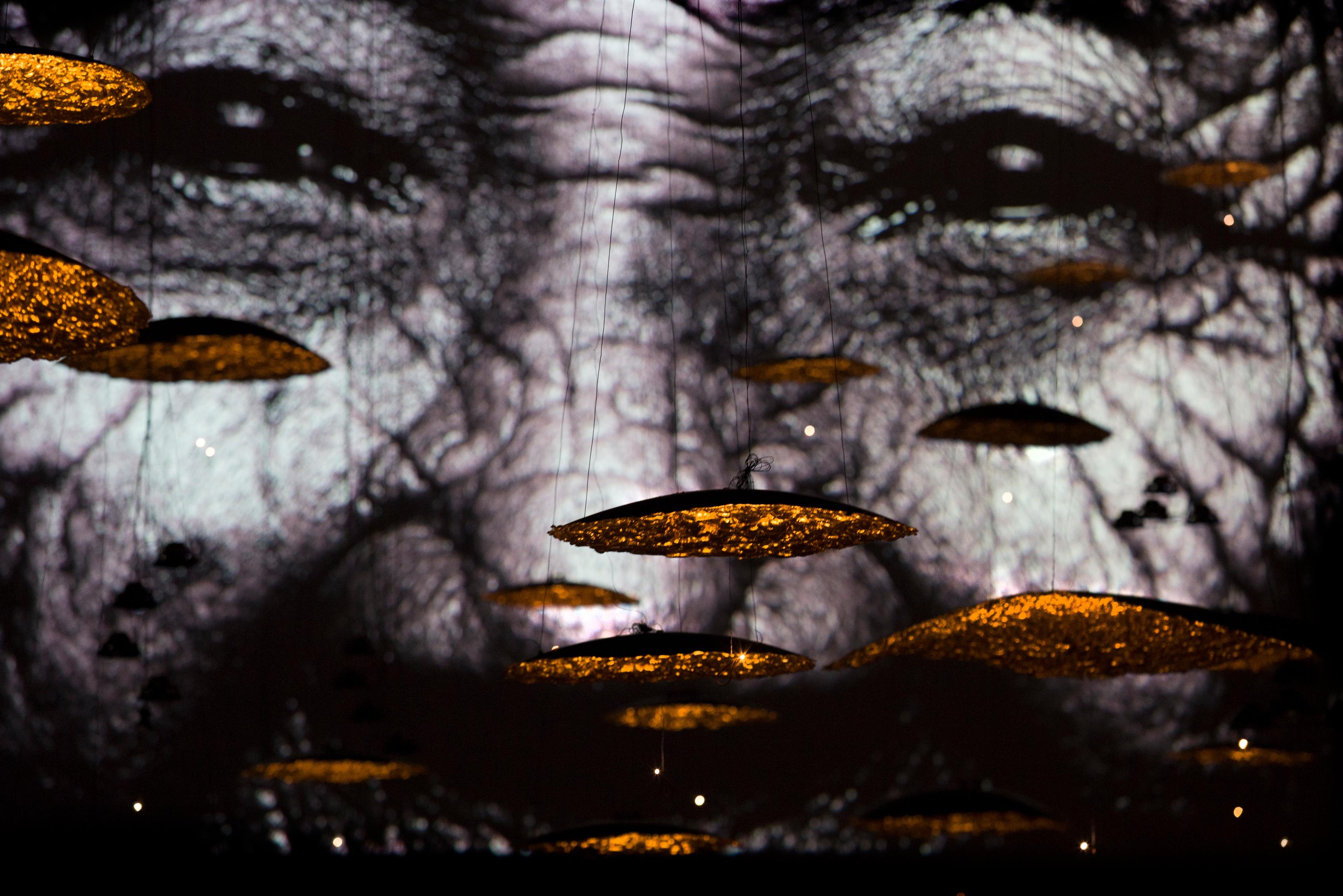 Emozioni di luci e ombre, di Enzo Catellani, ad Alma Mater di Yuval Avital