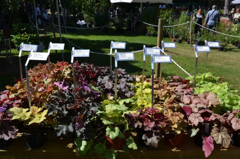 Giardini d'Autore 2016