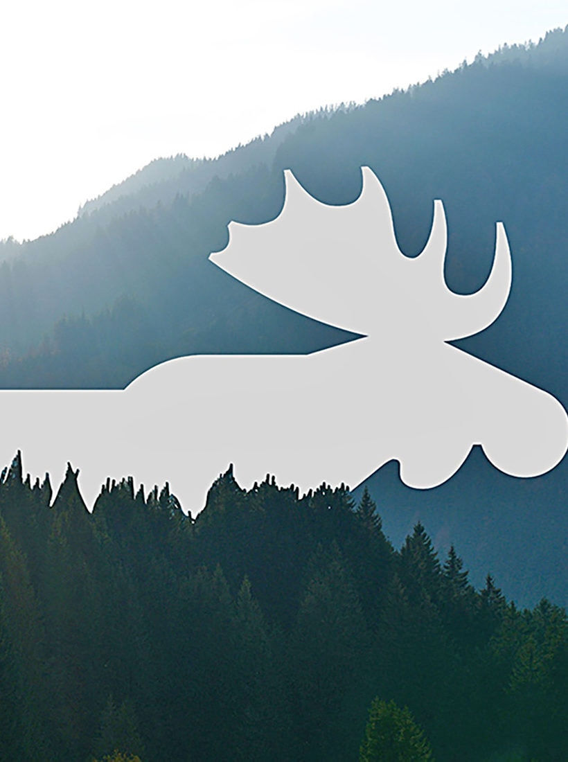 Snøhetta: Visual Design