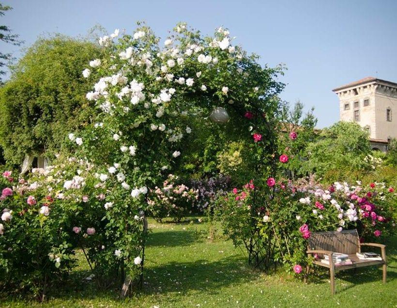 Garden Festival