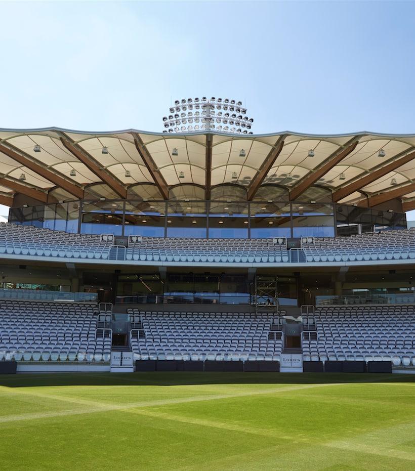 Il legno e il cricket
