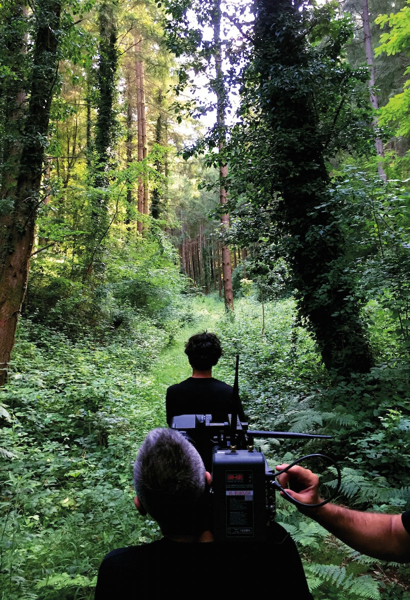 La musica degli alberi