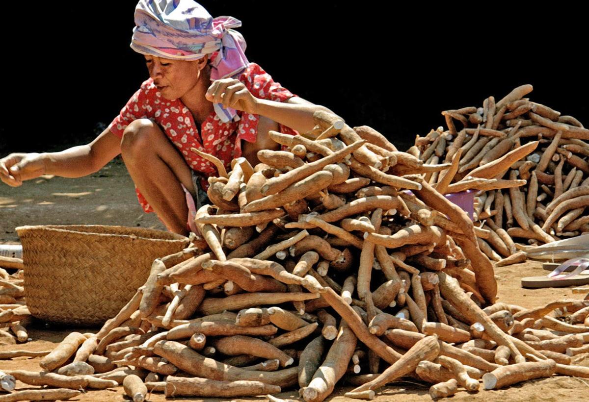 Gianni Viviani_Madagascar_2005_cm32x48