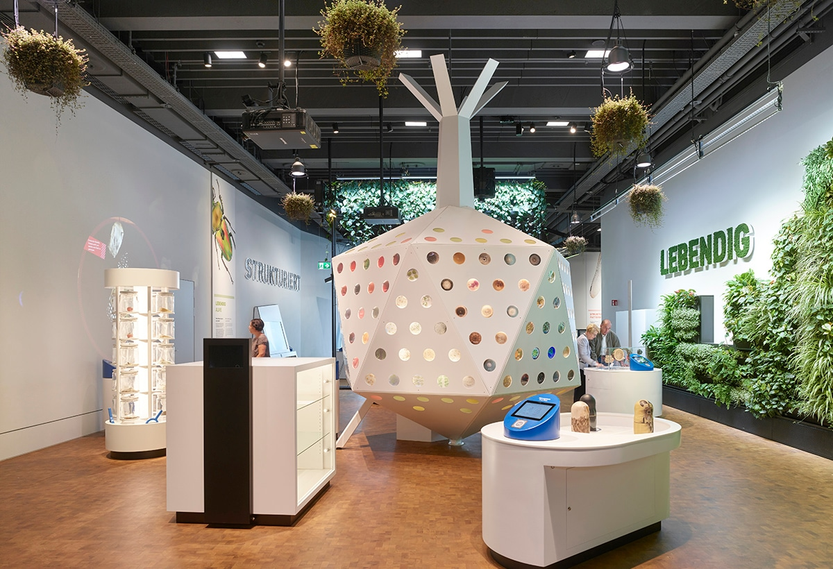 OG1: Ausstellung