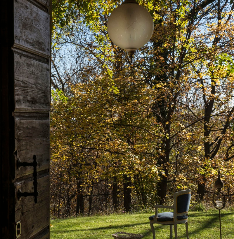 Chiara Maspero – Refuge in the wild 4