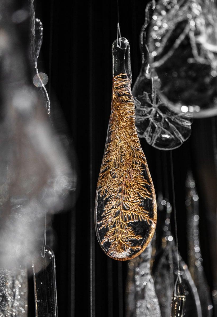 The Glass Herbarium