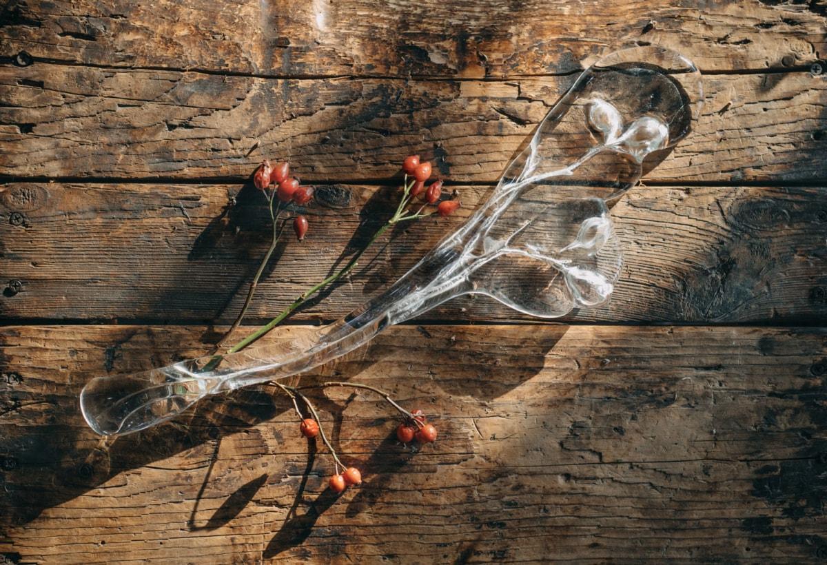 LASVIT_Herbarium_story of creation (27)