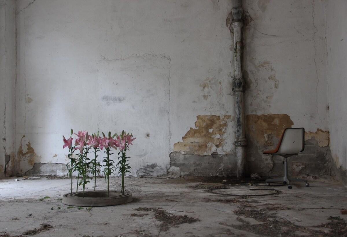 sara-ricciardi-creatività-comodità-9
