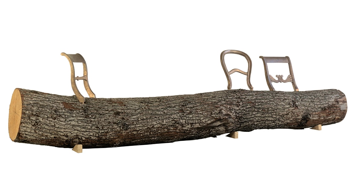 Tree Trunk di Jurgen Bey Droog