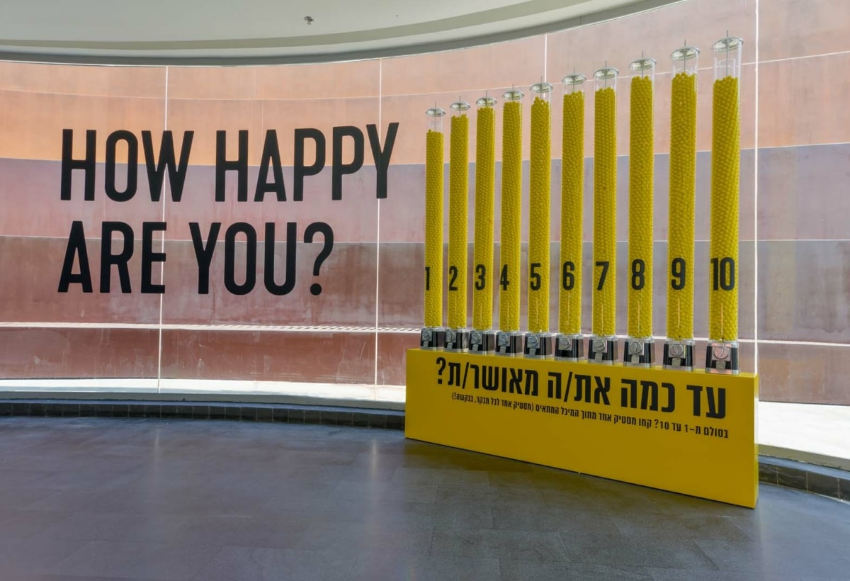 How Happy Are You, 2012 Image Credit Shay Ben Efraim