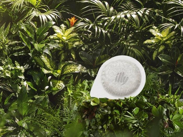 ESEpod_fondo piante_1024x768