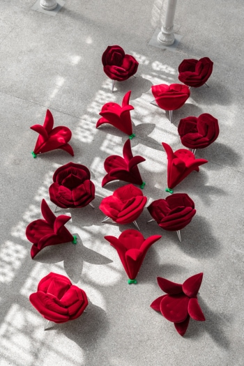 Edra Flowers alta