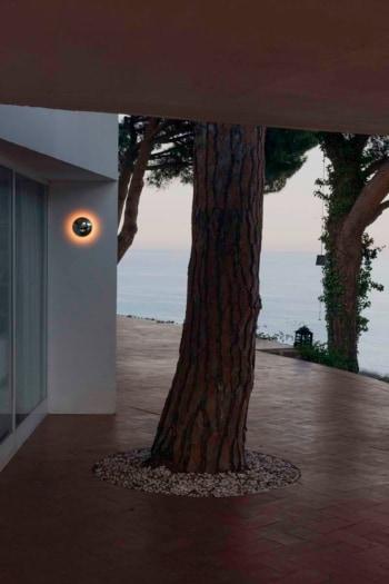 MARSET_LR_BABILA WITH A TREE