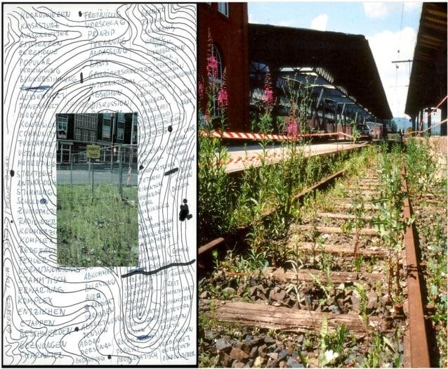 FuoriSalone 2021 eventi Brera, Stazione Porta Garibaldi. L'erbario in viaggio. Lois Weinberger (Austria). Courtesy Green Island e artista